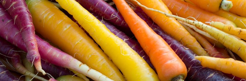 carota-polignano