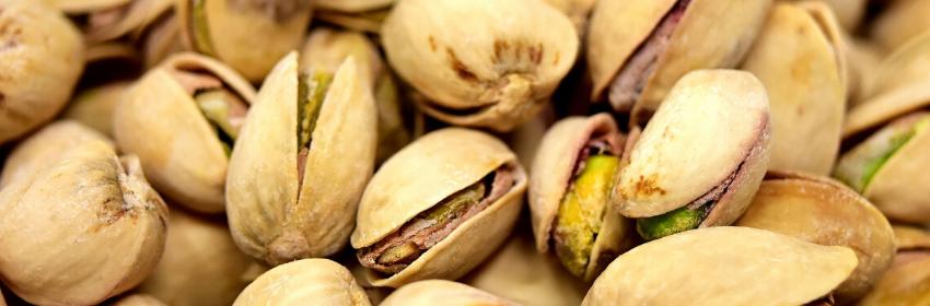 pistacchio sito