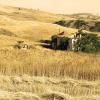 terreni granoduro